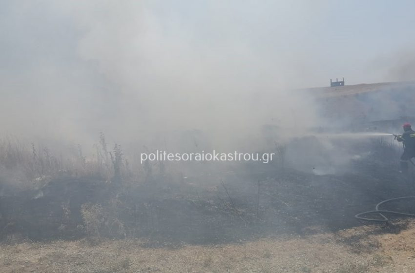 Φωτιά στη Νεοχωρούδα Θεσσαλονίκης – Κλειστοί οι επαρχιακοί δρόμοι