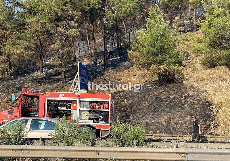 Θεσσαλονίκη: Κάηκαν 90 στρέμματα από τη φωτιά στο Σέιχ Σου