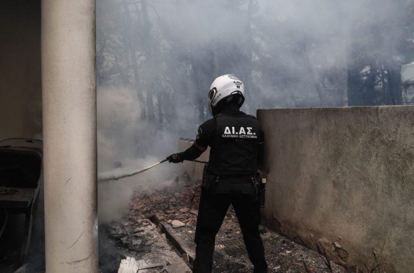 Προσαγωγή υπόπτου για τη φωτιά σε Σταμάτα-Ροδόπολη