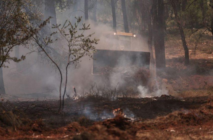 Ποινική δίωξη σε βάρος του 64χρονου μελισσοκόμου για τη φωτιά στη Σταμάτα