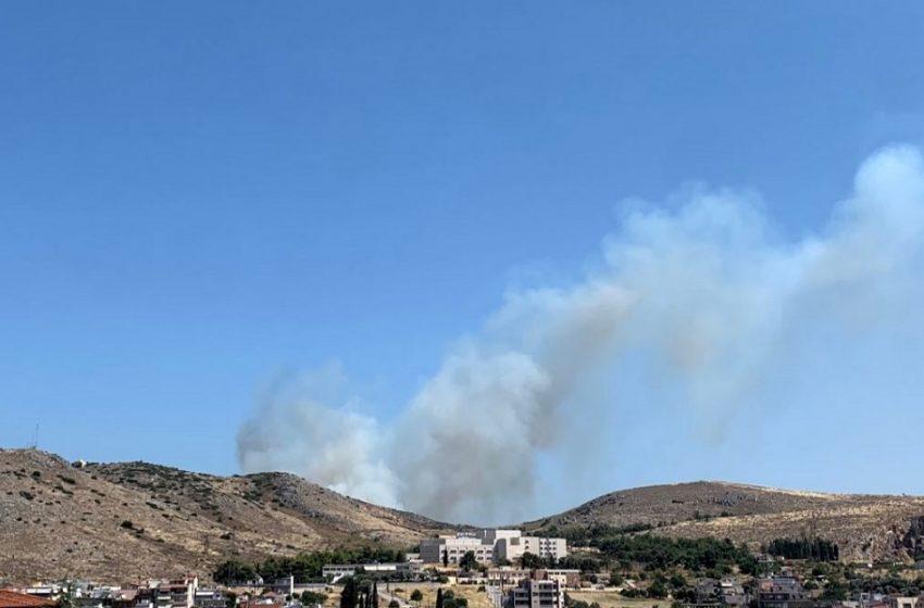 Φωτιά στη Χαλκίδα – Ισχυροί άνεμοι – Αποπνικτική η ατμόσφαιρα στην πόλη