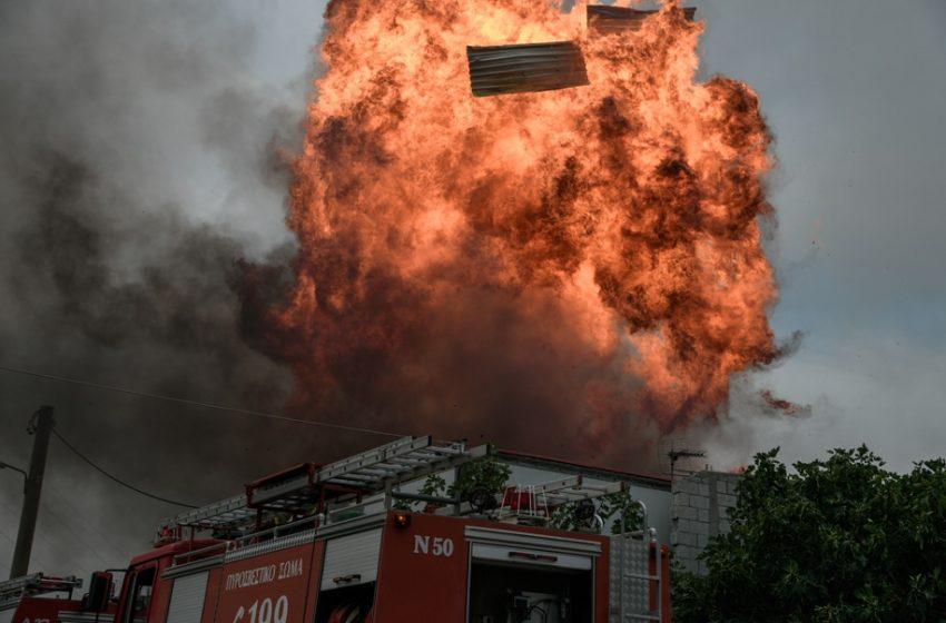 Προς Ωρωπό το μέτωπο της Μαλακάσας – Οι φλόγες καίνε Βαρυμπόμπη, Θρακομακεδόνες