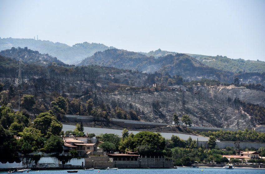 Αχαΐα: Στάχτη πάνω από 3.000 στρέμματα – Οι καμένες περιοχές