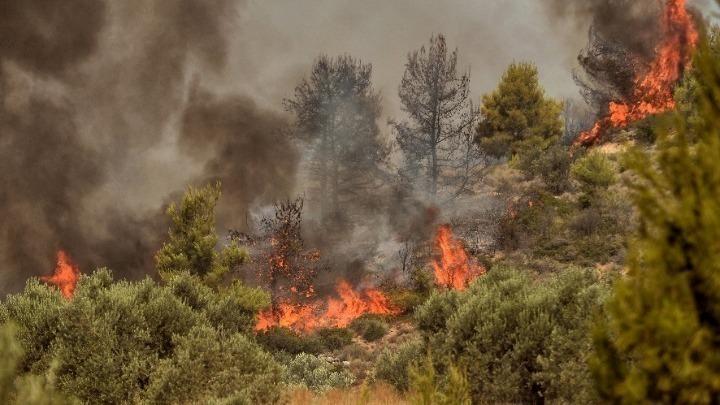 """Βίλια-Αντιπεριφερειάρχης Δ. Αττικής: """"Μπορεί να γίνει Εύβοια αν ξεφύγει η φωτιά"""""""