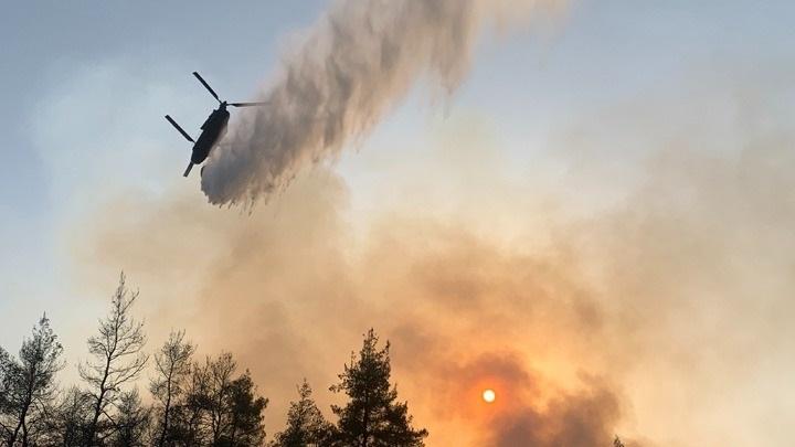 Φωτιά στην Γορτυνία: Μάχη να μην περάσει στο Μαίναλο