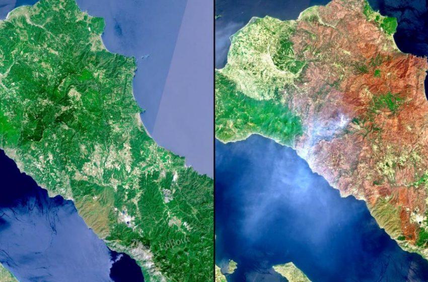 Βόρεια Εύβοια:Στα 465.820 στρέμματα η καμένη έκταση