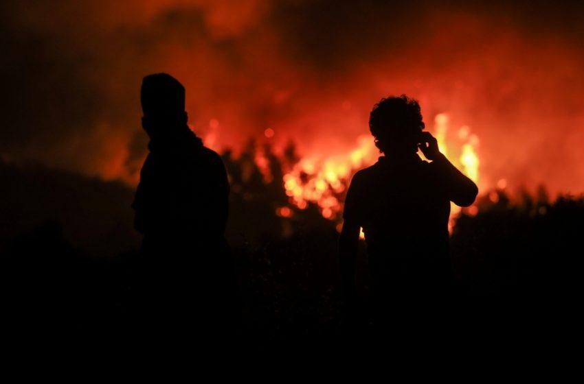 """Β. Εύβοια: """"Η φωτιά θα φτάσει στη Χαλκίδα"""" – Δραματική έκκληση του δημάρχου"""