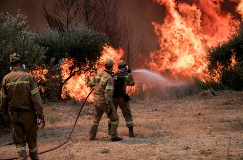 Μικρές εστίες φωτιάς στις περιοχές Κρυονέρι, Λάσδικα, Μηλιές και Δούκας Ηλείας