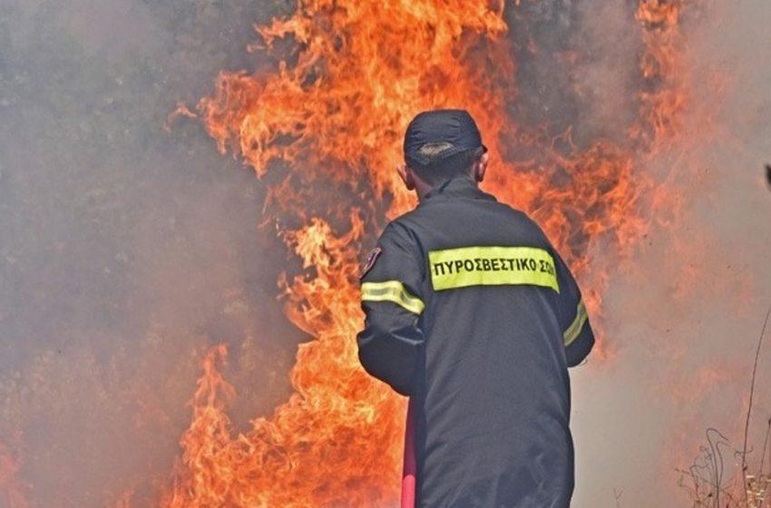Μάνη: Σε τρία μέτωπα η φωτιά