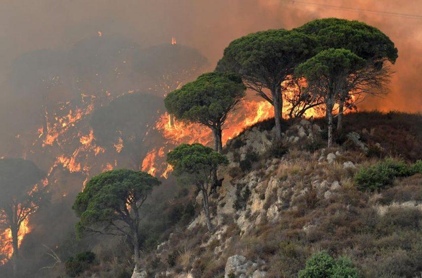 Ιταλία: Οι πυροσβέστες αντιμετώπισαν περισσότερες από 500 πυρκαγιές