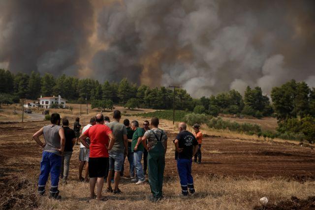 """Δήμαρχος Ιστιαίας: """"Περιμένουμε το ολοκαύτωμά μας, το μόνο που ξέρουν είναι να στέλνουν γελοία μηνύματα για εκκένωση"""""""