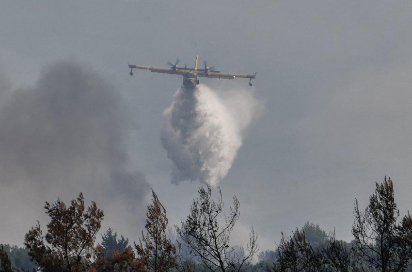 Πυρκαγιά στη Μάνδρα – Επιχειρούν πέντε αεροσκάφη και δύο ελικόπτερα