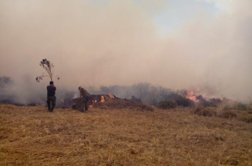 Στην ορεινή περιοχή της Δεσφίνας καίει μέτωπο της φωτιάς στο δήμο Ανατολικής Μάνης