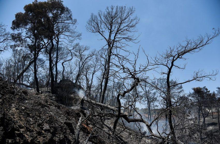 ΚΚΕ: Αμεση καταγραφή των ζημιών στην Αιγιαλεία και αποζημίωση των πληγέντων