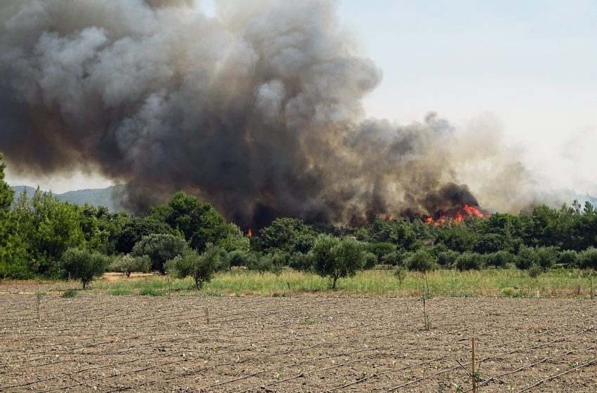 Πολύ υψηλός κίνδυνος πυρκαγιάς την Τρίτη σε πολλές περιοχές της χώρας