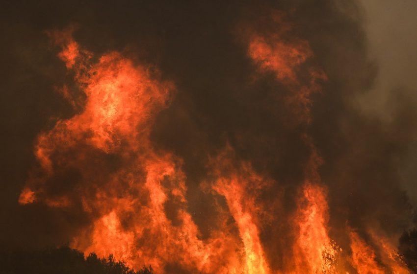 ΣΥΝΕΧΗΣ ΕΝΗΜΕΡΩΣΗ: Εκτός ελέγχου η πυρκαγιά στη Βαρυμπόμπη-Εκκενώθηκε και το Ολυμπιακό Χωριό (pics-vid)