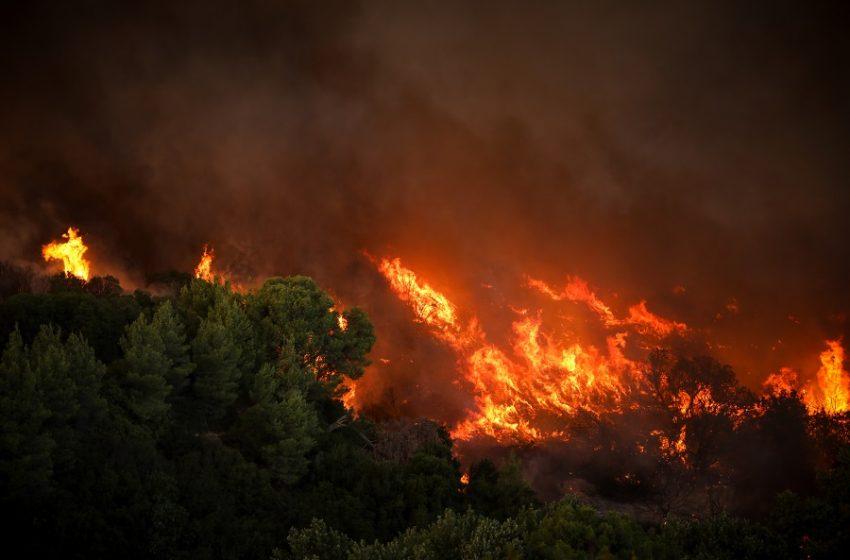 Μάχη με τις φλόγες σε Εύβοια, Μάνη, Μεσσηνία, Κω και Καλάβρυτα