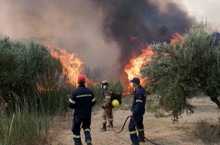 Υπ. Οικονομικών: Μέτρα ανακούφισης και στήριξης των πληγέντων από τις πυρκαγιές