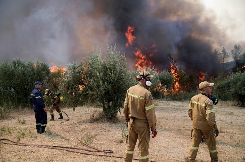 Φωτιά-Γρεβενά: Μήνυμα του 112 για εκκένωση τεσσάρων οικισμών