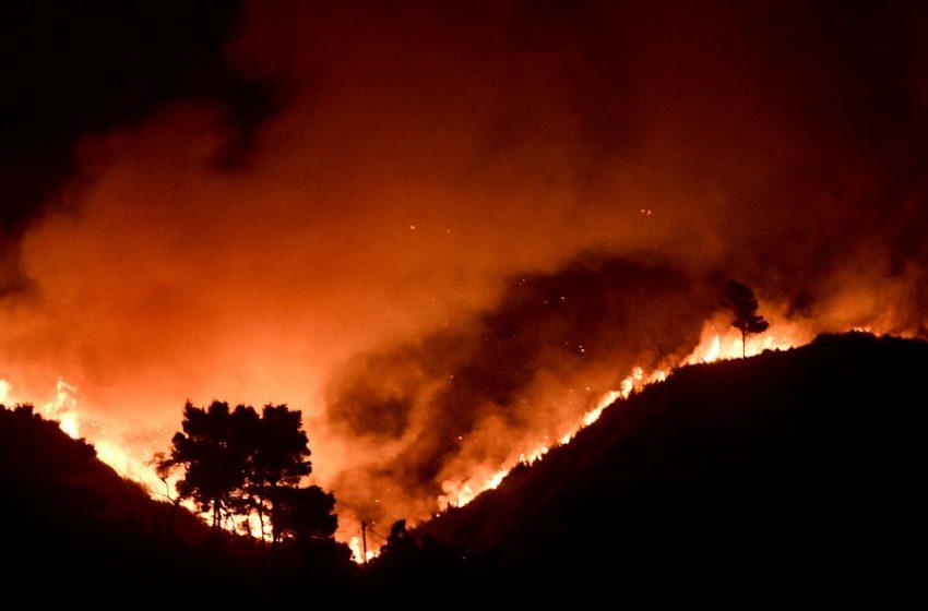 98 νέες πυρκαγιές το τελευταίο 24ωρο-Τρεις συλλήψεις για εμπρησμούς-Χαρδαλιάς:Ζούμε πρωτόγνωρες συνθήκες