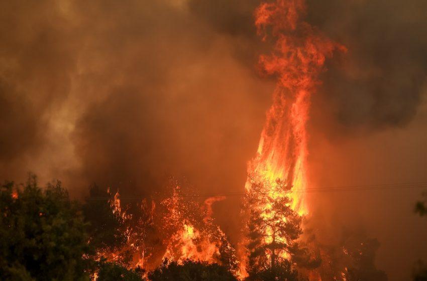 Φωτιά στην Εύβοια: Εκκενώνεται η Λίμνη – Απομακρύνονται με ferry boat οι κάτοικοι
