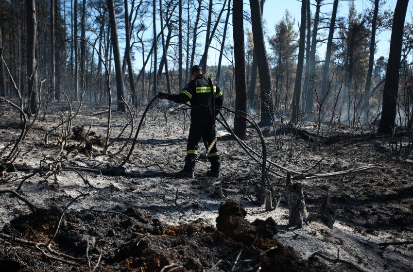 ΚΚΕ για φωτιές: Επικοινωνιακά τερτίπια ΝΔ και ΣΥΡΙΖΑ