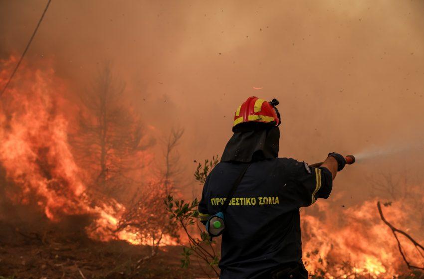 Φωτιά στην Εύβοια –  Εκκενώνεται η Αβγαριά – Δραματικές στιγμές στη Γαλατσώνα
