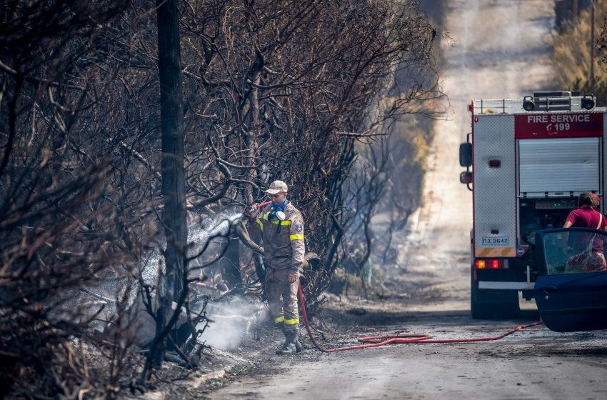 Φωκίδα: Περιορίστηκε η πορεία της φωτιάς σε Κροκί και Λιβάδι