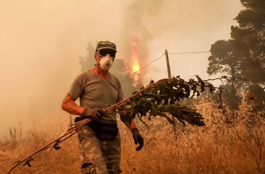 Εύβοια: Νέο μέτωπο προς Αιδηψό – Εκκλήσεις από τους κατοίκους για εναέρια μέσα