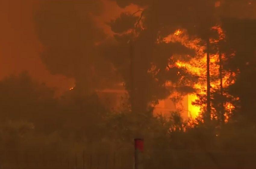 Η φωτιά μπήκε στο Πευκί – Υπεράνθρωπες προσπάθειες για να σωθεί το χωριό