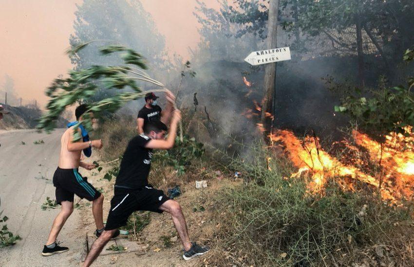 Σχεδόν 90 οι νεκροί από τις πυρκαγιές στην Αλγερία