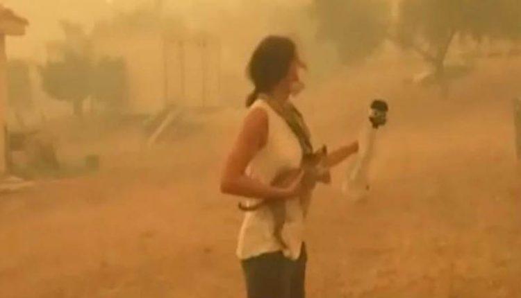 Η στιγμή που δημοσιογράφος σώζει γατάκι από τις φλόγες (vid)