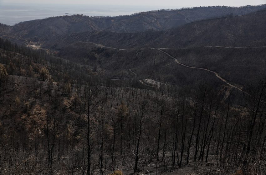 Ασύλληπτη η καταστροφή στην Εύβοια όπως την κατέγραψε drone  – Στατιστικά στοιχεία σοκ από το Ευρωπαϊκό Σύστημα  Πληροφόρησης (vid)