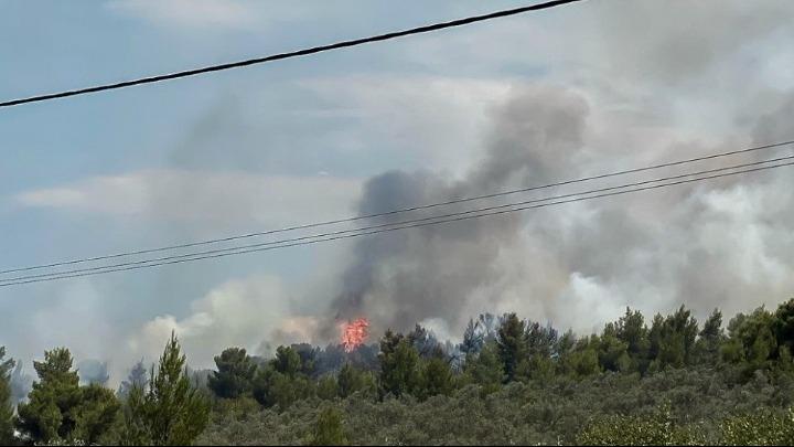 Εκκενώνεται ο Θεολόγος Μαλεσίνας στο νομό Φθιώτιδας λόγω της φωτιάς