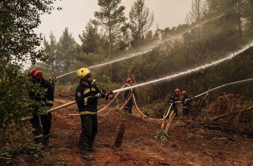 Πιστώθηκαν 3,94 εκατ. ευρώ σε πληγέντες από τις πυρκαγιές
