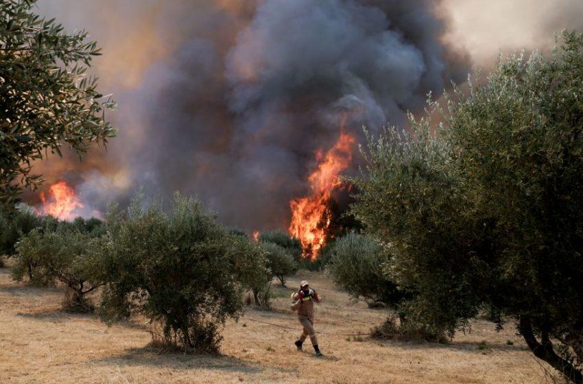 Δύο πολίτες και δύο πυροσβέστες με εγκαύματα και αναπνευστικά προβλήματα στο Κέντρο Υγείας Αρχαίας Ολυμπίας