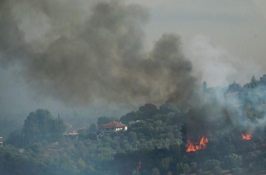 Μεγάλη φωτιά στη Μάνη- Εκκενώνεται το Γύθειο- Καταγγελίες για καθυστερημένη επιχείρηση της Πυροσβεστικής