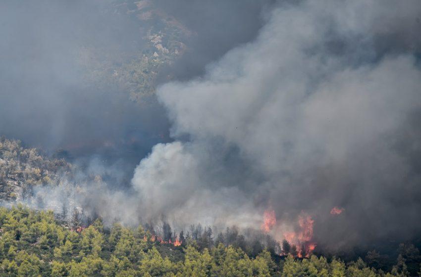 Φωτιές στην Αχαϊα και στην Ηλεία