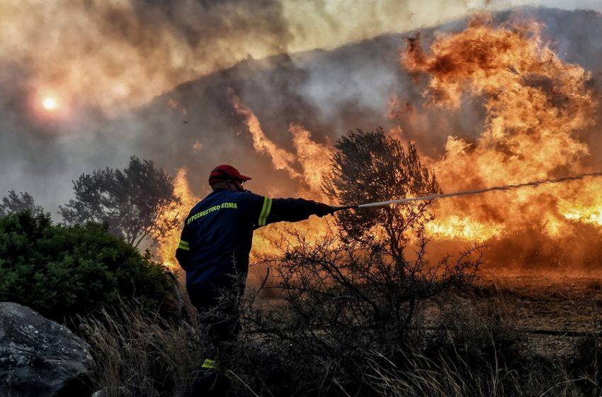 Η εικόνα στα πύρινα μέτωπα: Ποια παρουσιάζουν ύφεση, πού δίνεται μάχη – Αυξημένος κίνδυνος πυρκαγιάς σε 6 περιφέρειες