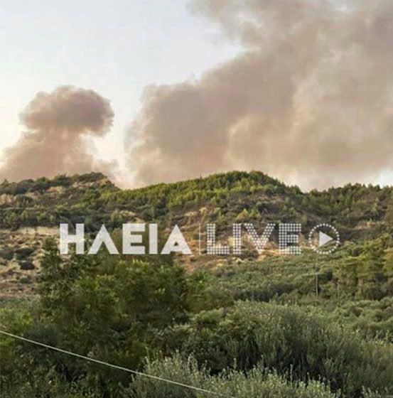 Αμαλιάδα: Νέα  φωτιά στην περιοχή της Κορυφής