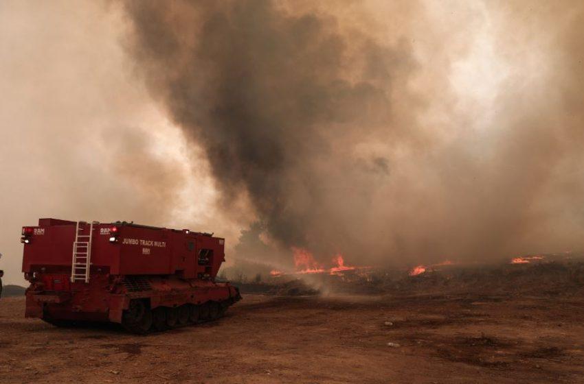 Δύο προσαγωγές για τις φωτιές σε Κρυονέρι και Φωκίδα