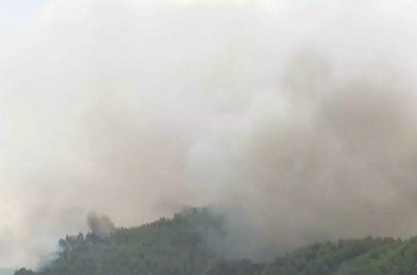 Εύβοια: Φτάνουν στην θάλασσα οι φλόγες- Eκκενώνονται τα Βασιλικά
