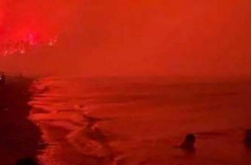 Εύβοια: H συγκλονιστική εικόνα από την παραλία της Αγίας Άννας