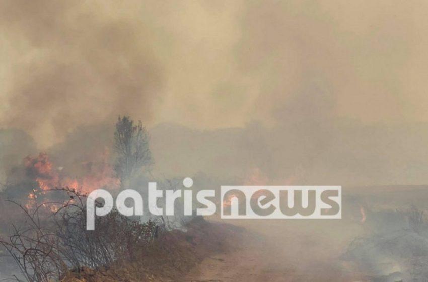 Φωτιά-Αρχαία Ολυμπία: Εγκλωβισμένοι 4 κάτοικοι στα Βίλλια σε αγροικία