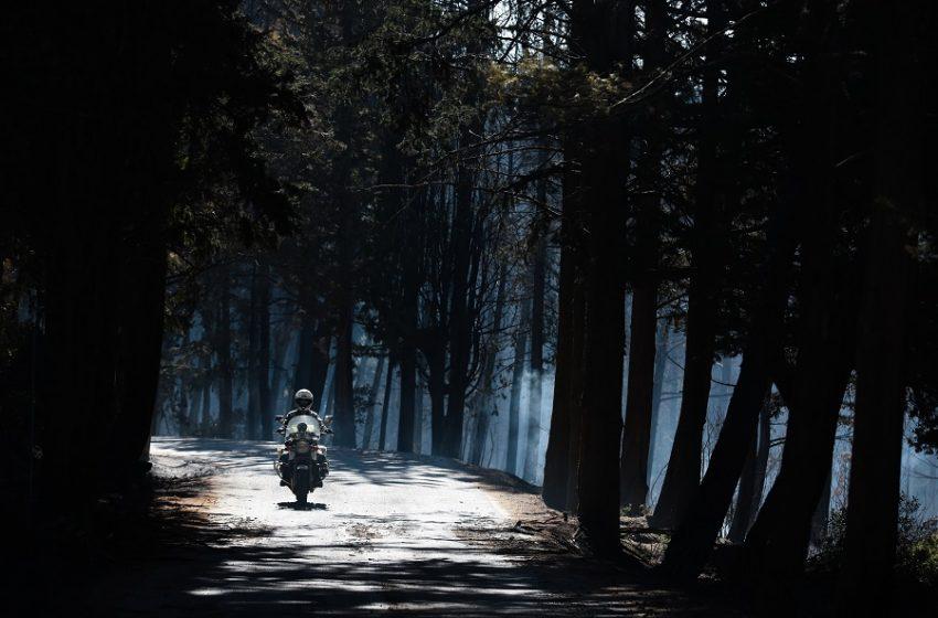 Πολύ υψηλός κίνδυνος πυρκαγιάς: Ποιες περιοχές αφορά