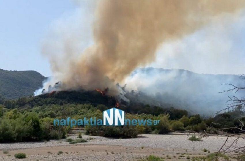 Φωτιά στο Παραδείσι Αιτωλοακαρνανίας -Εκκενώνονται προληπτικά οικισμοί