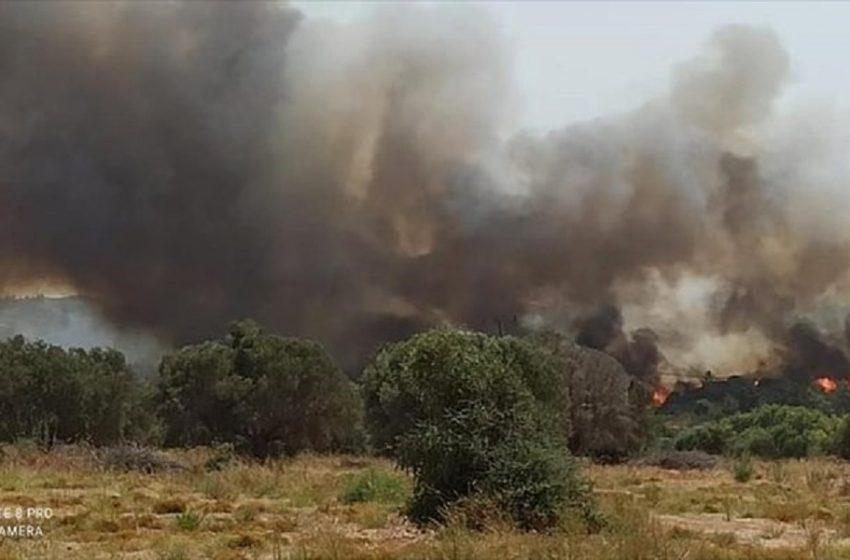 Μεγάλη φωτιά στη Ρόδο – Χωρίς ρεύμα και νερό πολλές περιοχές του νησιού
