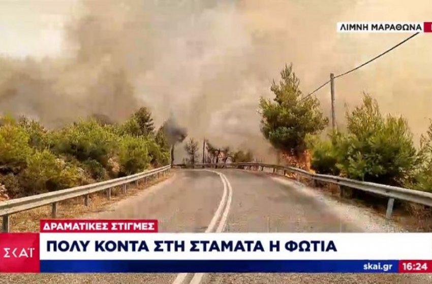 Μαίνεται η πυρκαγιά στη λίμνη Μαραθώνα- Βρίσκεται πολύ κοντά στη Σταμάτα