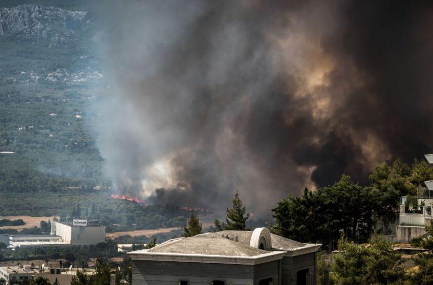 Ολοκληρώθηκε η απομάκρυνση των αλόγων που κινδύνευσαν από την πυρκαγιά στη Βαρυμπόμπη