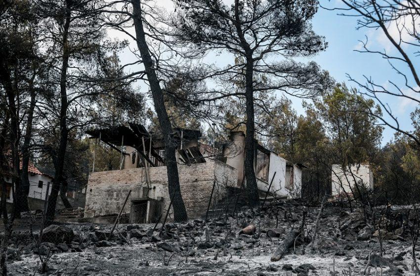 Κατάσταση έκτακτης ανάγκης στην περιοχή των Βιλίων – Οριοθετήθηκε η φωτιά, πάνω από 80.000 στρέμματα δάσους, στάχτη